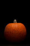 Pumpkin on Black - Vertical Stock Image