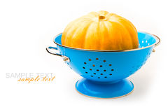 Pumpkin in blue colander Stock Photography