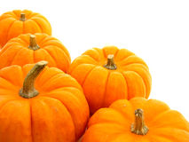 Pumpkin border Stock Photos