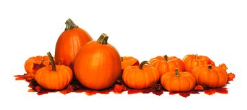 Pumpkin border Royalty Free Stock Photo