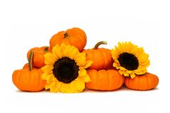 Pumpkin border Royalty Free Stock Photos