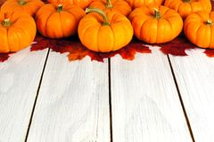 Pumpkin border on wood Stock Photo