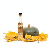 Pumpkin and bottle with groats on fall leafs Royalty Free Stock Photo