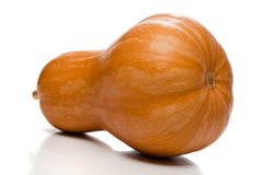 Pumpkin Bottom-side, Isolated Royalty Free Stock Photo