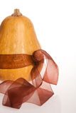 Pumpkin bowed with brown textile ribbon. On white background Stock Photos