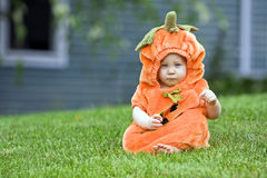 Pumpkin boy Stock Image