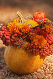 Pumpkin with branch of rowanberry Royalty Free Stock Photo