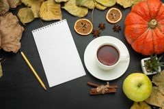 Pumpkin bright foliage alarm clock paper note pencil apple. autumn harvest style of the country. flat lying season food view from. Above dark background banner stock photo