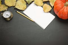 Pumpkin bright foliage alarm clock paper note pencil. autumn harvest style of the country. flat lying food season view from above. Dark background banner on royalty free stock photos