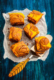 Pumpkin brownies Stock Images
