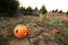 Pumpkin with bullet holes Stock Image