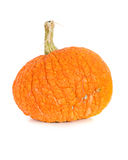 Pumpkin: Bumpy Pumpkin on White Royalty Free Stock Photos