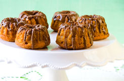 Pumpkin bundt cakes with chocolate Stock Images