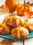 Pumpkin buns. Homemade Pumpkin buns on plate royalty free stock photo