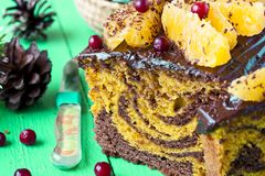 Pumpkin cake with chocolate and oranges. Pumpkin cupcake with chocolate, cranberries and oranges Stock Images