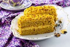 Pumpkin cake. With pistachios, peanuts and oatmeal Royalty Free Stock Photo