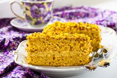 Pumpkin cake. With pistachios, peanuts and oatmeal Stock Images