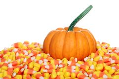 Pumpkin with candy corn Stock Image