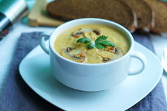 Pumpkin, carrot and Champignon mushrooms soup. With cream and parsley on white  background Top view Stock Photos