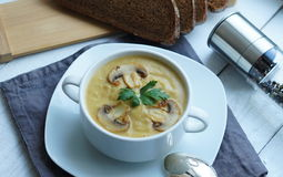 Pumpkin, carrot and Champignon mushrooms soup. With cream and parsley on white  background Top view Stock Images