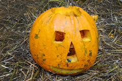 Pumpkin carved with a smile and bats (Halloween background for a Royalty Free Stock Images