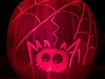 Pumpkin with carved spider Royalty Free Stock Photos
