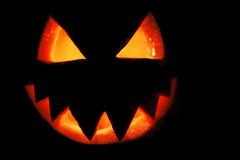 Pumpkin carved into spooky demon face for haloween royalty free stock photo