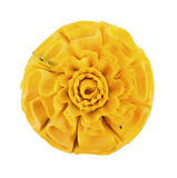 Pumpkin Carving Flower on white background Royalty Free Stock Photo