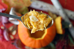 Pumpkin Carving with a Spoon royalty free stock photos