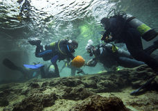 Pumpkin Carving Underwater - Blue Springs. A group of scuba divers carve pumpkins underwater on Halloween morning at Blue Springs state park in Mariana, FL in stock images