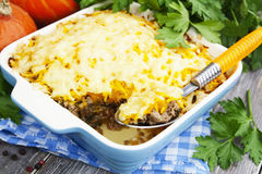 Pumpkin casserole with meat Stock Images