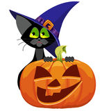 Pumpkin and cat. Halloween. Royalty Free Stock Image