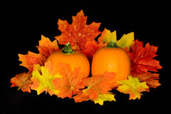 Pumpkin Centerpiece. Miniature pumpkin and fall maple leaf centerpiece on background of black micro velvet stock images