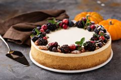 Pumpkin cheesecake with sour cream topping. And fresh seasonal berries and nuts Royalty Free Stock Photos