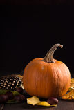 Pumpkin with chestnuts Stock Images