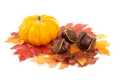 Pumpkin, chestnuts and fake autumn leaves Royalty Free Stock Photos