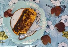 Pumpkin chocolate  cake Stock Photography