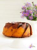 Pumpkin chocolate cake Stock Image