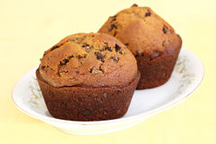 Pumpkin Chocolate Chip Muffins Stock Photos