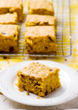 Pumpkin Chocolate Chip Oatmeal Bars. Selective focus stock image