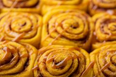 Pumpkin cinnamon rolls close up Stock Photo