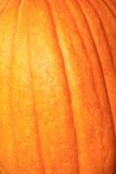 Pumpkin Close Up. Beautiful harvest pumpkin close up for background or screensaver.  Nice coloring and veining.  Edges are soft to draw attention to the center Royalty Free Stock Photos