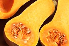 Pumpkin. Close-up of cutted squash royalty free stock photography