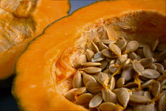 Pumpkin. Closeup of pumpkin seeds a newly opened Royalty Free Stock Images
