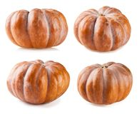 Pumpkin collection isolated on white backgroun Stock Photography