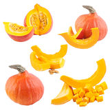 Pumpkin collection Royalty Free Stock Image