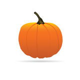 Pumpkin on a color for Halloween vector illustration Royalty Free Stock Photo