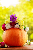 Pumpkin with colorful flowers on wooden table against natural background. stock photography
