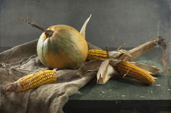 Pumpkin and corn Royalty Free Stock Photography
