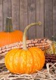 Pumpkin and Corn Royalty Free Stock Photo
